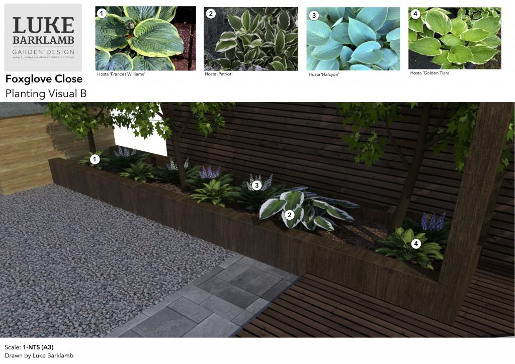 planting visual B